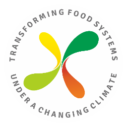 Transforming Global Food Systems under Climate Change