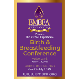 The Virtual Experience: Birth & Breastfeeding Conference