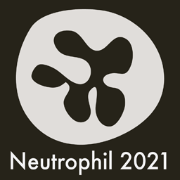 Neutrophil 2021